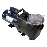 Single Speed Pool Pumps